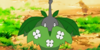 Cheryl's Wormadam (Plant Cloak)