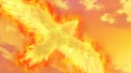 Jan Talonflame Flame Charge