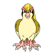 018Pidgeot OS anime 2