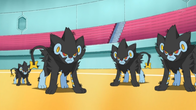 File:Volkner Luxray Double Team.png