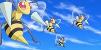 Beedrill (anime)