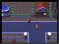 File:Pokemon-diamond-version-20070724083156797.jpg