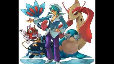 Pokemon R S E Remix Champion Steven Wallace (2nd Remix)