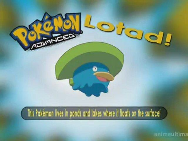 Having a Wailord of a Time