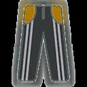 File:Pants F Grey Stripe Yellow.png