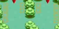 Viridian Forest 2