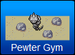 Pewter Gym Official Icon