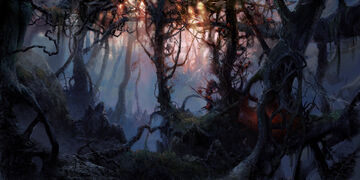 Bloodwood forest