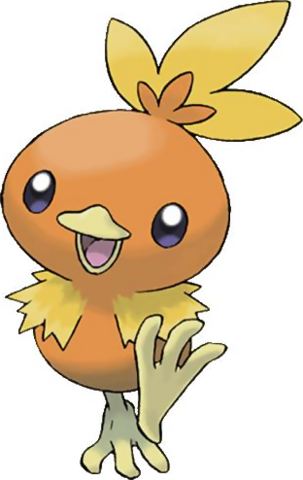 File:Torchic 2.png