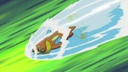 Buizel Using Aqua Jet