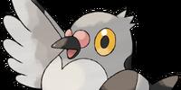 Pidove (Pokémon)