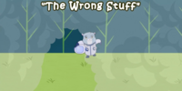 The Wrong Stuff/Gallery