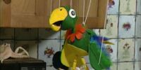 Potty the Parrot
