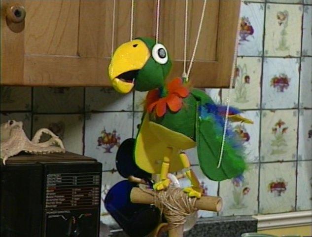 File:Potty the Parrot.jpg