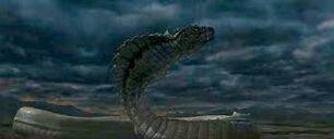 Buraki (Dragon Wars)