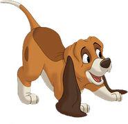 Copper as a Pup