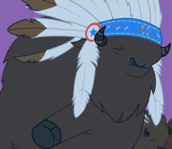 File:Chief Thunderhooves.png