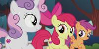 The Cutie Mark Crusaders (Apple Bloom, Sweetie Belle and Scootaloo)