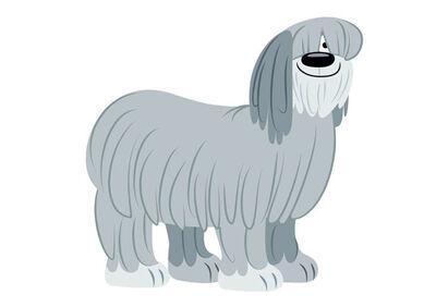 Niblett-pound-puppies-2010-17238245-570-402