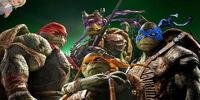 Weekenders Adventures of Teenage Mutant Ninja Turtles (2014)