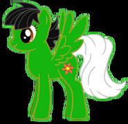 Fiona pony