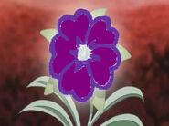 Heart flower purple
