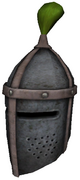 Tourney helmG
