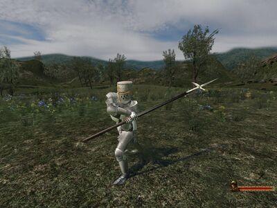 Veteran Polehammer 2