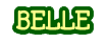 Belle 17 banner