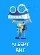 -9 Sleepy Ant
