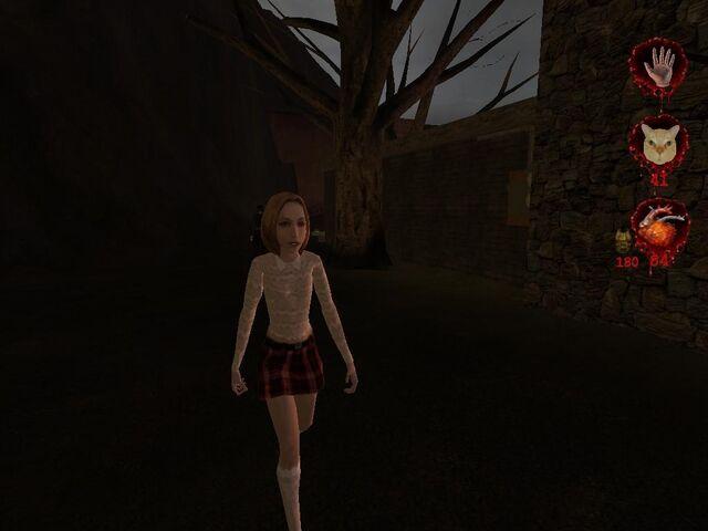 Plik:Woman in normal clothes.JPG