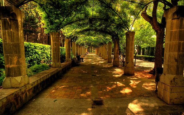 File:Beautiful-alley-bench-nature-spain.jpg