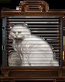 White-cat-lrg.png