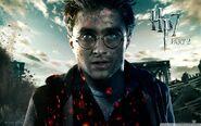 Harry-Potter-harry-potter-33045859-1920-1200