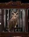 Screech-owl-lrg.png