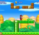 Super Mario Flash DS