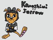 Sad Kanashimi