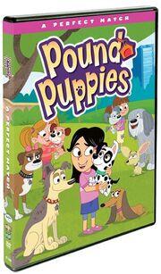 PoundPuppies-A Perfect Match