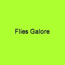 File:Flies galore title card.jpg