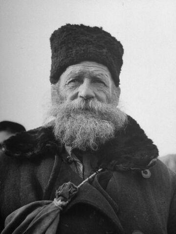File:Portrait-shot-of-old-man-in-face-bearded-wrinkled-full-of-character.jpg