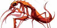 Mantis Physiology