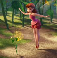 Rosetta Garden-Talent Fairies