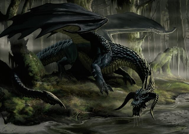 File:Black Dragon.jpg