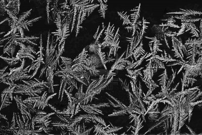 File:12441090-close-up-of-ice-crystals-on-dark-background.jpg