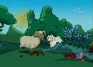 Bob the sheep