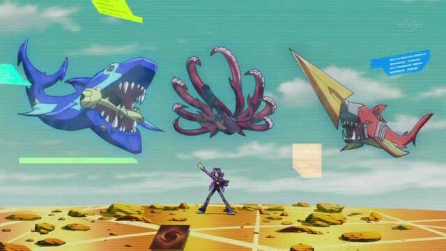 File:Shark's Sharks.jpg