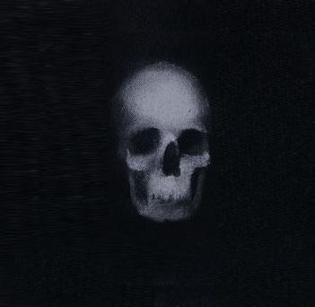 File:Skull-3.jpg