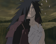 Hashirama in Madara