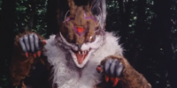Fox Evo