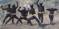 Shadow Rangers (Wild Force)